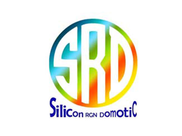 Silicon RGN Domotic